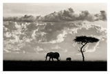 Silhouettes of Mara