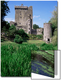 Blarney Castle  County Cork  Munster  Eire (Republic of Ireland)