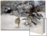 A Hare in the Snow  1927