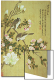Crabapple  Magnolia and Baitou Birds