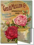 Seed Catalogues: The Geo. H. Mellen Co. Condensed Catalogue of Special Offers Acrylique