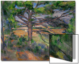 Large Pine Tree and Red Earth  1890-1895