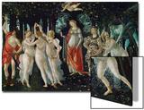 La Primavera (Spring)  1477