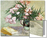 Vase with Oleanders and Books  c1888