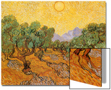 Sun over Olive Grove  1889