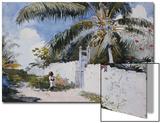 A Garden in Nassau  1885