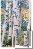 Birch Trees  1910