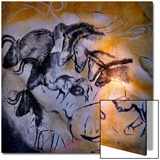 Animals and Birds  Chauvet-Pont-D'Arc Cave  Ardeche