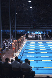 August 1960: Unidentified Swim Race in the Stadio Del Nuoto  1960 Rome Summer Olympic Games