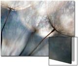 Problèmes de panne Acrylique par Ursula Abresch