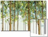 Forest Study I Crop Acrylique par Lisa Audit