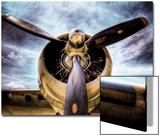 1945: Avion à hélice  Acrylique par Stephen Arens