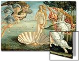 La naissance de Vénus, 1486 Acrylique par Sandro Botticelli