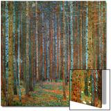 Forêt de pins, 1902 Acrylique par Gustav Klimt