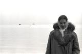 Carol Hall at Seattle's Fisherman's Wharf on a Misty Morning  Puget Sound  Seattle  Washington