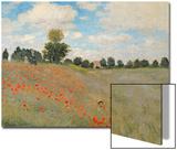 Wild Poppies  Near Argenteuil (Les Coquelicots: Environs D'Argenteuil)  1873