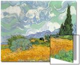 Wheatfield with Cypresses, 1889 Acrylique par Vincent Van Gogh
