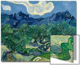Les oliviers, 1889 Acrylique par Vincent Van Gogh