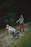Model in Tom Brigance-Designed Outfit  Walks a Trio of Dogs Along a Path  New York  New York  1954