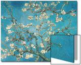 Almond Blossom, 1890 Acrylique par Vincent Van Gogh