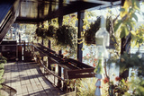 View of Hanging Plants on the Deck of a Floating Home  Sausalito  CA  1971