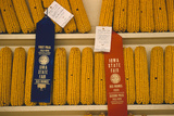 1955: First and Second Place Ribbon-Winning 'Field Corn' Entries at the Iowa State Fair