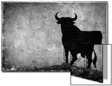 Spain  Andalucia  Jerez De la Frontera  El Cuadrejon  An Osborne Bull or Toro De Osborne