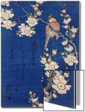 Bouvreuil et cerisier pleureur en fleur Acrylique par Katsushika Hokusai
