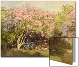 Lilac in the Sun  1873