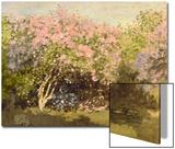 Lilac in the Sun  1873