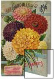 Seed Catalogues: John Gardiner and Co, Philadelphia, Pennsylvania. Seed Annual, 1896 Acrylique