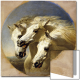 Pharaoh's Horses  1848