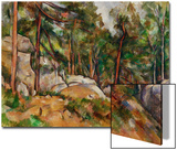 The Rocks in the Park of the Chateau Noir  1898-1899