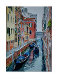 Venice  Canal  2015