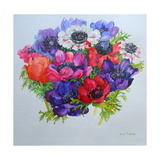 Anemones: Red  White  Pink and Purple