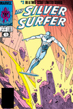 Silver Surfer By Stan Lee and Moebius No 1: Silver Surfer