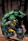 Incredible Hulk No80 Cover: Wolverine and Hulk
