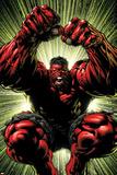 Hulk: Red Hulk Must Have Hulk No3 Cover: Hulk