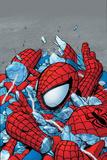 Amazing Spider-Man No565 Cover: Spider-Man