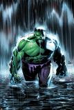 Incredible Hulk No77 Cover: Hulk