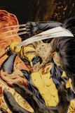 Wolverine Origins No40 Cover: Wolverine