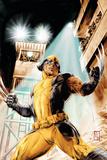 Wolverine Origins No42 Cover: Wolverine