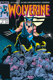 Wolverine No1 Cover: Wolverine