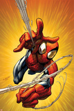 Ultimate Spider-Man No160 Cover: Spider-Man Shooting Web