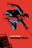 The Amazing Spider-Man No7 Cover