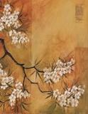 Oriental Blossoms II