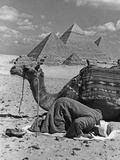 Prayer in Front of the Pyramids of Giza  1942