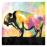Colorful Buffalo