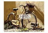 Her Bicycle