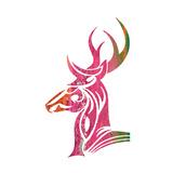 Tribal Buck 1
